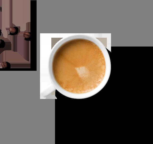 Hiilite | Marketing, SEO, Branding, Web & Graphic Design Web Design SEO Marketing Branding Hiilite Coffee and Beans