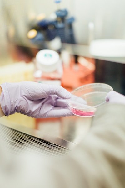 web design marketing seo | A scientist handling a Petri dish inside of a university lab