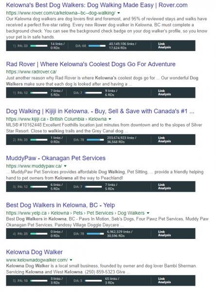 dog walker kelowna serp