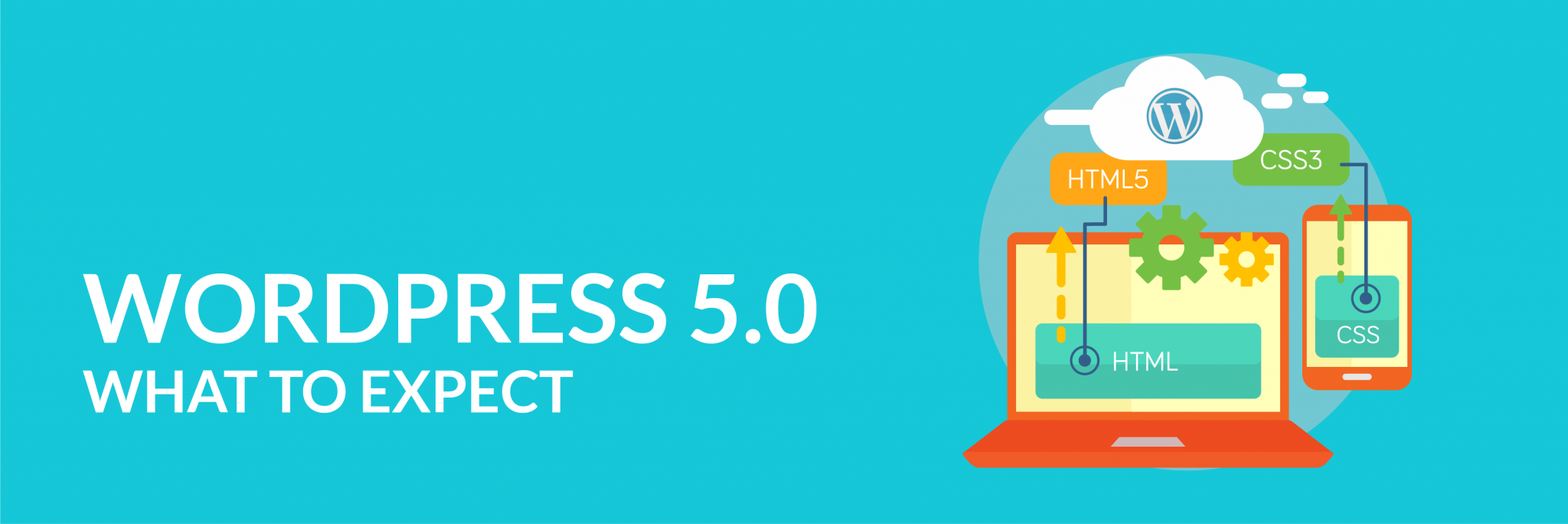Read more on New Version Of WordPress (5.0) What's Changed & How To Update