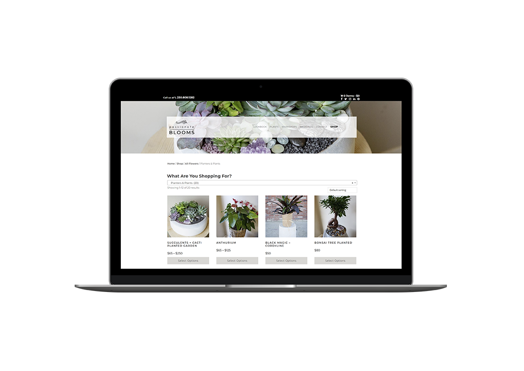 retail marketing and ecommerce website for passionate blooms