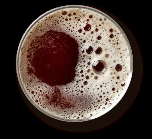 kelowna rustic brewery top view of beer